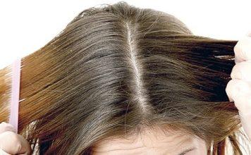 cuidado cabello1 356x220 Home