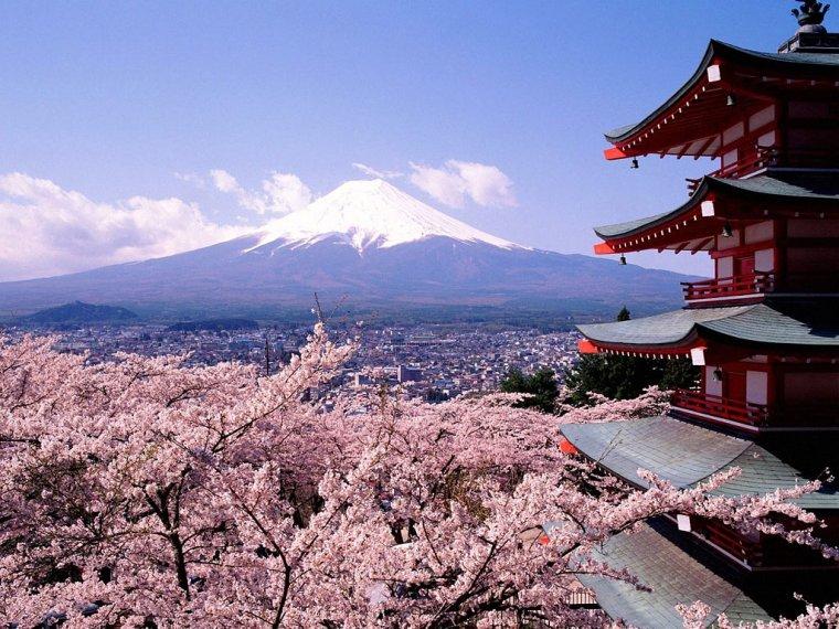 viajar japon 4 lugares maravillosos para tener en cuenta a la hora de visitar Japón