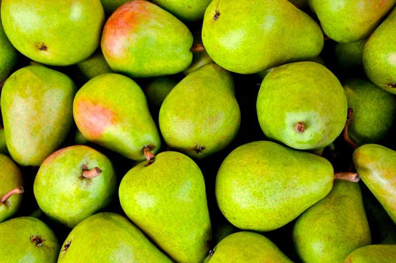 peras Descubra que Alimentos o Comidas son Ideales para Hacer Dietas