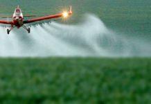 herbicida glifosato