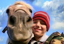 Los niños vuelven a equitación