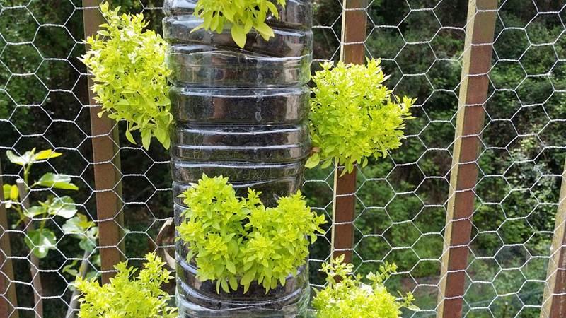 huerto vertical urbano Alegra tu jardín con bricolaje