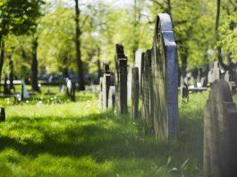 turismo cementerial 265x198 Home