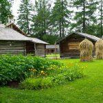 Casa con huerto 150x150 Cómo empezar con un jardín en casa