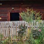 Casa jardin con flores 150x150 Cómo empezar con un jardín en casa