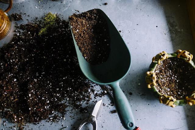 pala jardin Cómo empezar con un jardín en casa