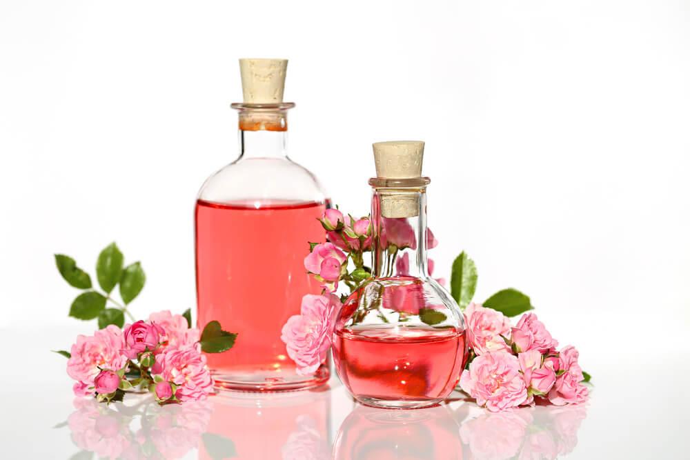 rosa mosqueta Consejos y remedios naturales para disimular cicatrices
