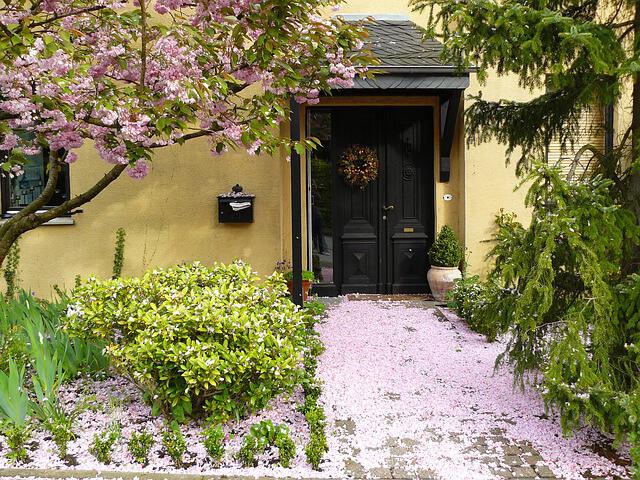 Jardín camino ¿Cómo decorar un jardín pequeño?