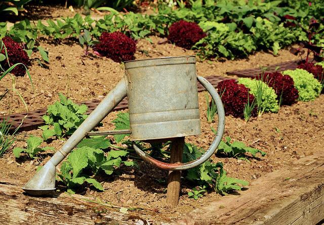 Jardineras ¿Cómo decorar un jardín pequeño?