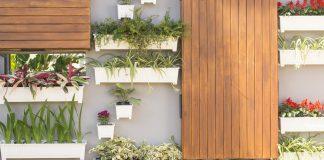 Imagen destacada jardín vertical