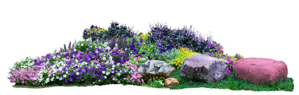 Jardín con piedras ¿Cómo hacer un jardín bonito sin dejarte el bolsillo en el intento?