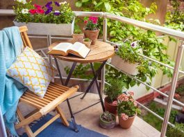 Jardín pequeño 265x198 Home
