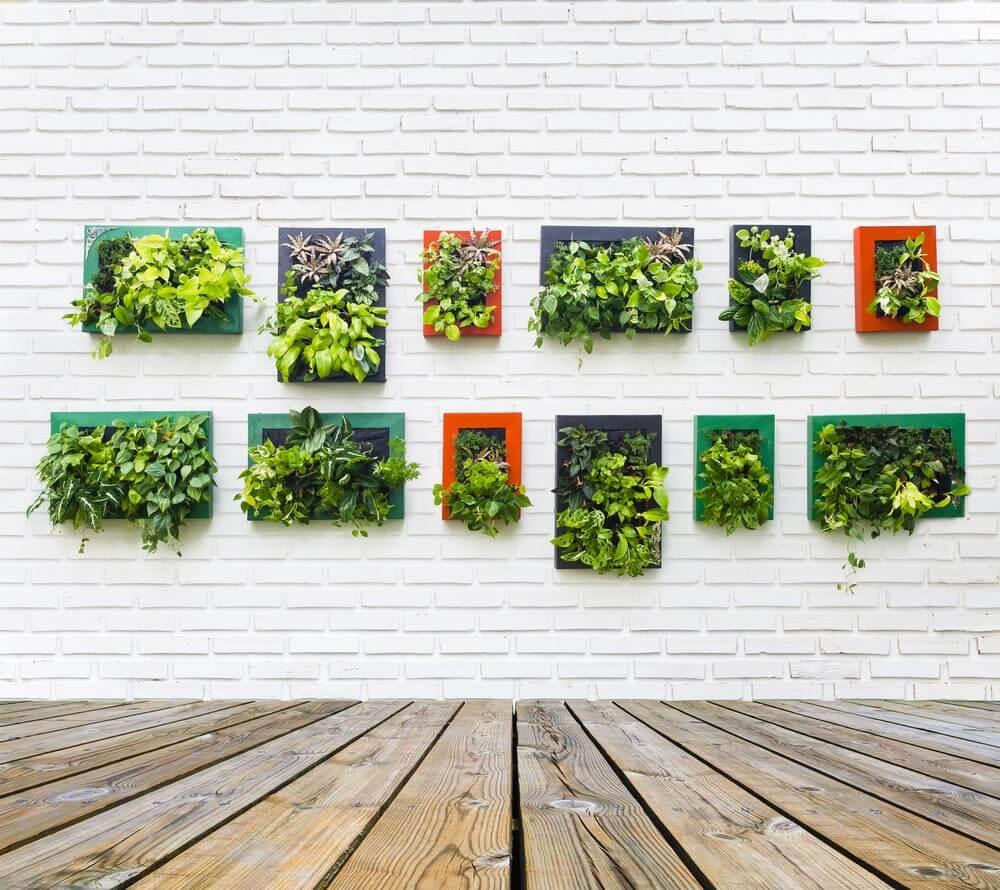 Jardín vertical ¿Cómo hacer un jardín vertical? Pasos para elaborarlo