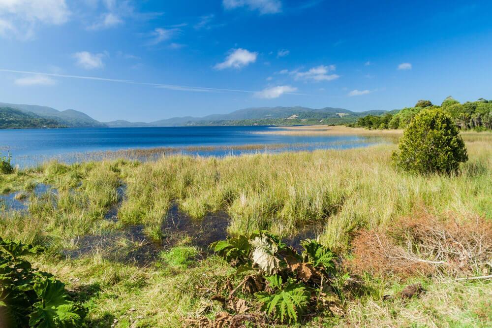 Parque Nacional Chiloé 7 motivos para conocer Chile