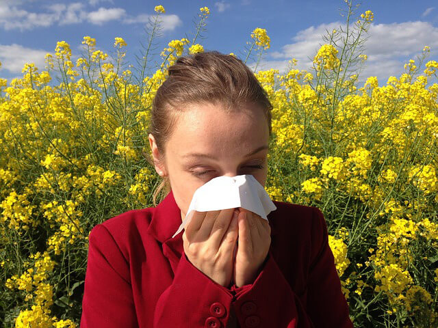 Alergia al polen Tipos de alergias ¿Qué le ocurre al cuerpo?.