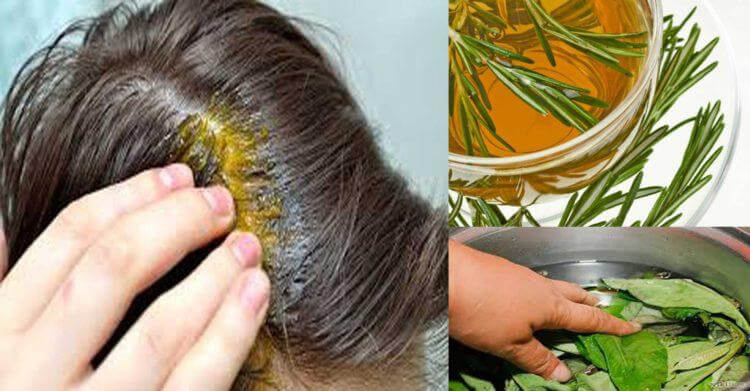 Colorear el pelo con té 3 maneras de colorear tu cabello de forma natural