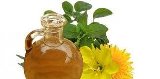 Flor del aceite de onagra