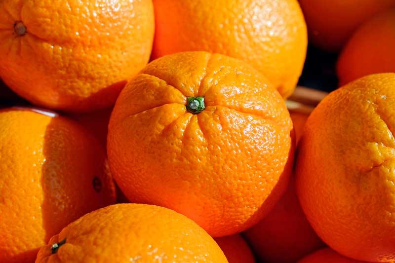comprar naranjas Las naranjas y sus beneficios para la salud