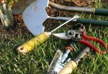 cuáles son las mejores herramientas de jardinería para el hogar